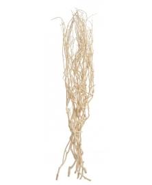 Crengi albite