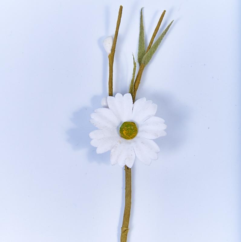 Flori decorative -Margareta alba