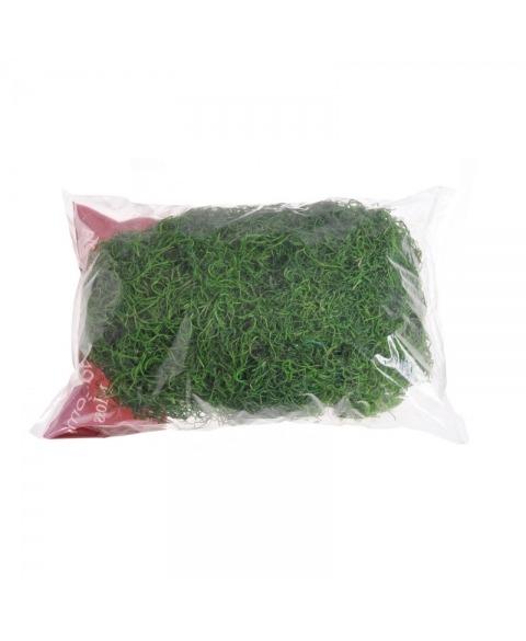 Muschi Tilancia decorativ verde