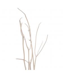 Ramuri albite Mitsumata