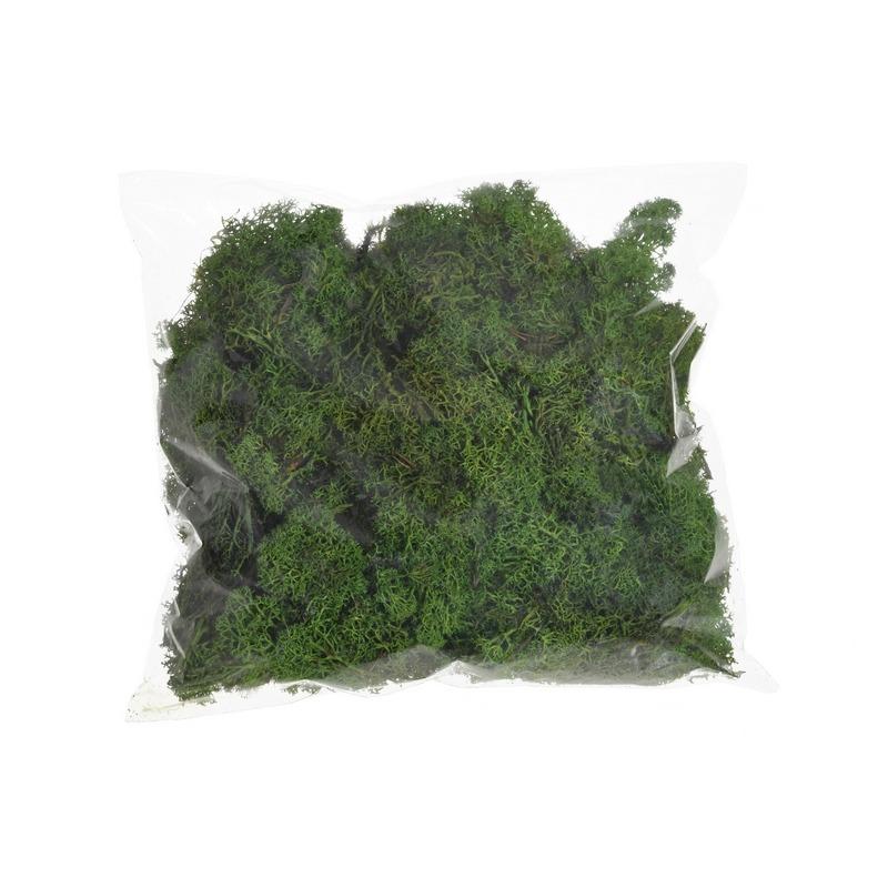 Muschi floral decorativ -verde