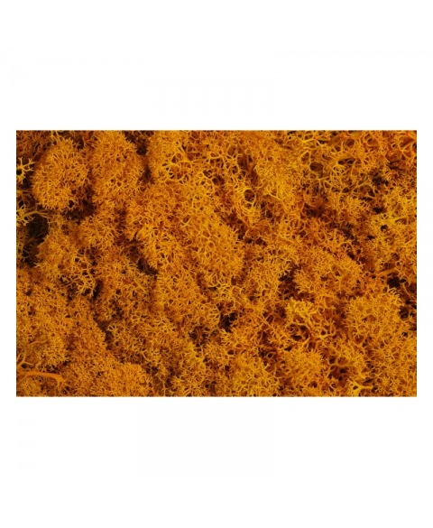 Muschi floral decorativ -portocaliu