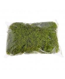 Muschi Tilancia decorativ verde deschis 100