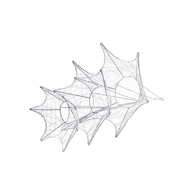 Structura baza flori
