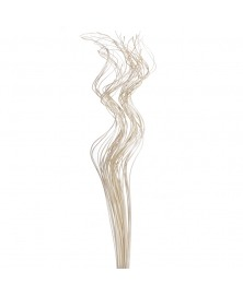 Ramuri rachita Spring -albita