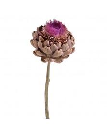 Floare de anghinare uscata