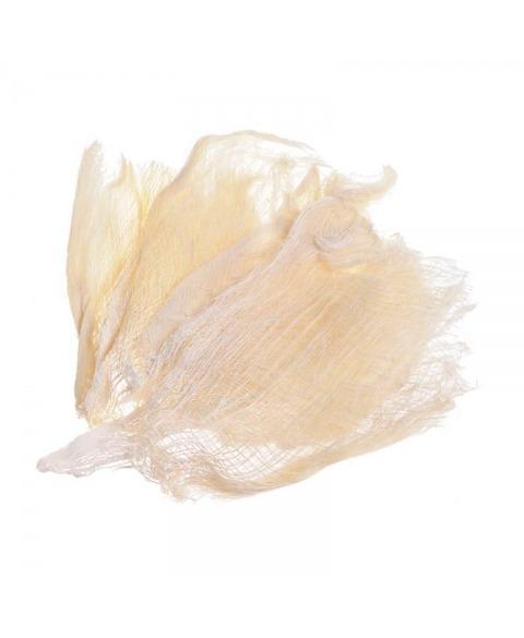 Scoarta de cocos albita