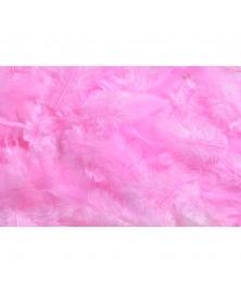Pene decorative naturale roz