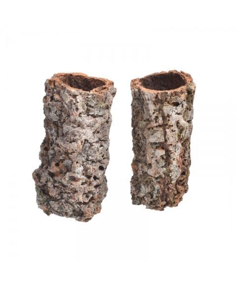 Scoarta de copac -cilindru