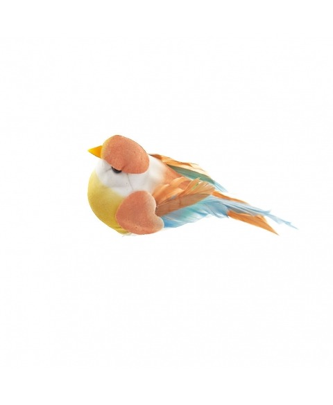 Pasarele Multicolore Pastel