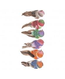 Pasarele Multicolore