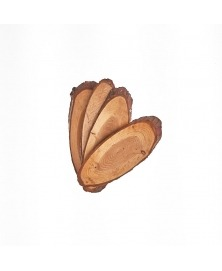 Felii Lemn Pin Ovale