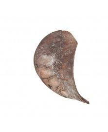 Urechi De Elefant Gri