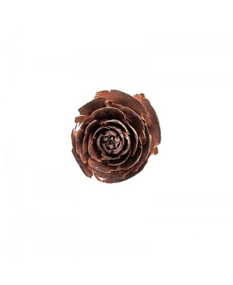 Rose de cedru