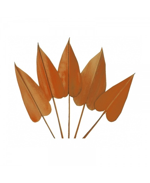 Frunze decorative arrow