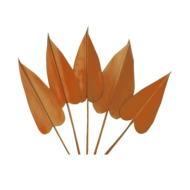 Frunze decorative arrow