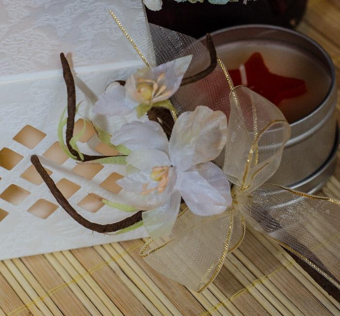 Flori piept -floare de piersic